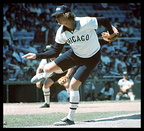 "1976 The ""Goose"" in shorts White Sox experimental uniforms"
